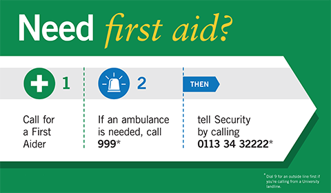 Need First Aid Poster - Ambulance Calls